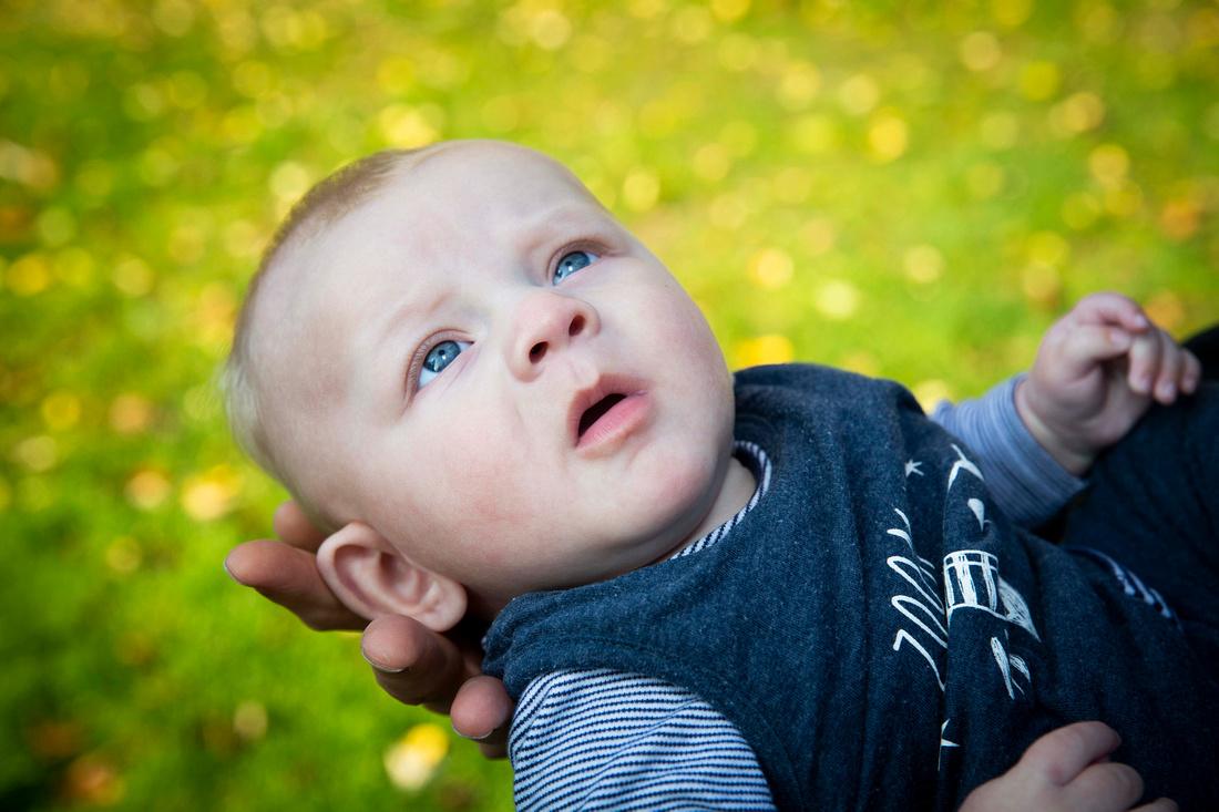 Baby portrait in park green grass