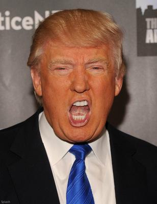 Donald Trump Orange